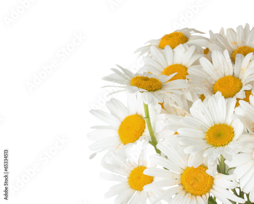 Foto op Canvas Madeliefjes daisy bouquet on the white background