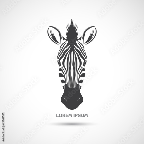 Fotografie, Obraz  Label with the head of a zebra. Vector.