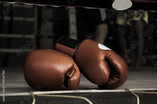 Photo  Boxing Glove Vintage