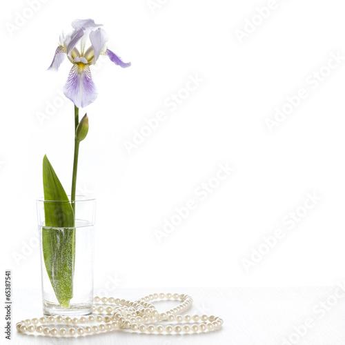 Spoed Foto op Canvas Iris Iris in a glass