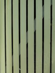 Puerta de madera verde. Textura