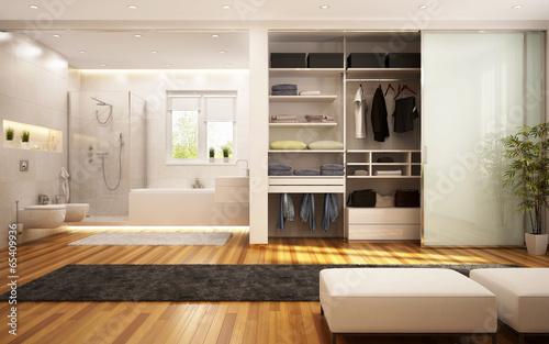 Fototapeta  Wardrobe and bathroom in the living room
