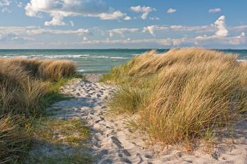 Fototapeta Dünen am Strand der Ostsee bei Heiligenhafen, Schleswig-Holstein