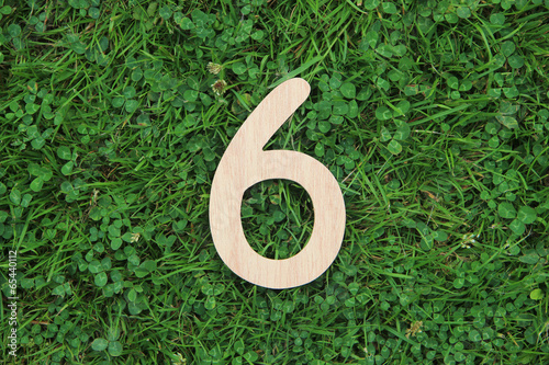 Obraz wooden number 6 on grass and clover background - fototapety do salonu