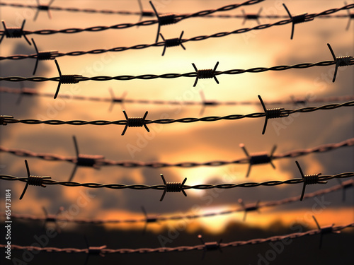 Canvastavla  Barbed Wire Sky