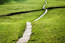 Long Flagstone Path Through Field