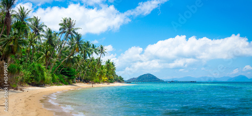 Photo sur Aluminium Tropical plage Untouched tropical beach