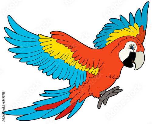Photo Stands Draw Cartoon animal - parrot - flat coloring style