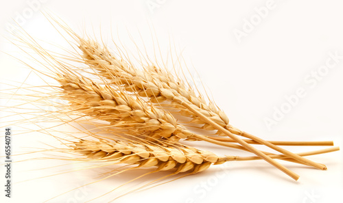Wheat ears isolated on a white
