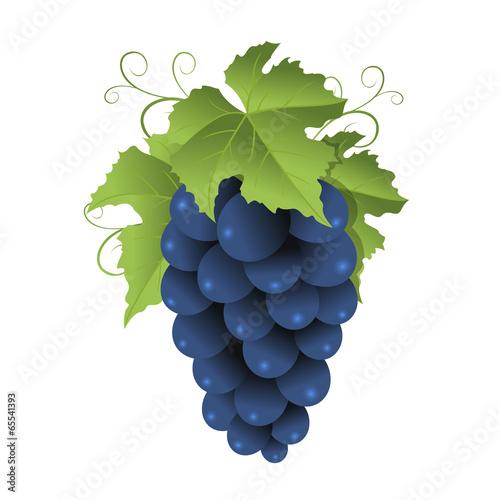 Blue grape Fototapete