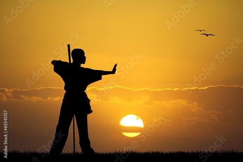 Fototapeta kung fu at sunset