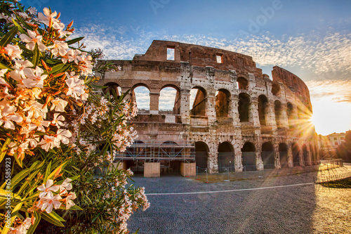 Colosseum during spring time in Rome, Italy Wallpaper Mural