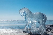 Horses, A Sculptures  From Ice