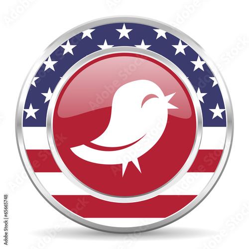 Obraz twitter american icon, usa flag - fototapety do salonu