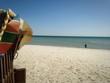 Strand an der Ostsee /Beach at the Saltic Sea
