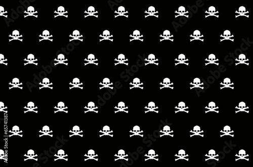 Photo  Skull
