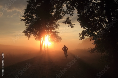 Poster Marron chocolat man on a bicycle in a misty landscape