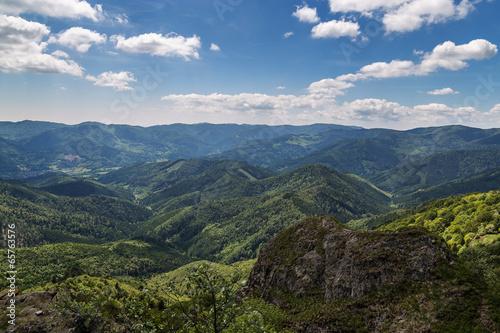Poster Kaki massif des Vosges