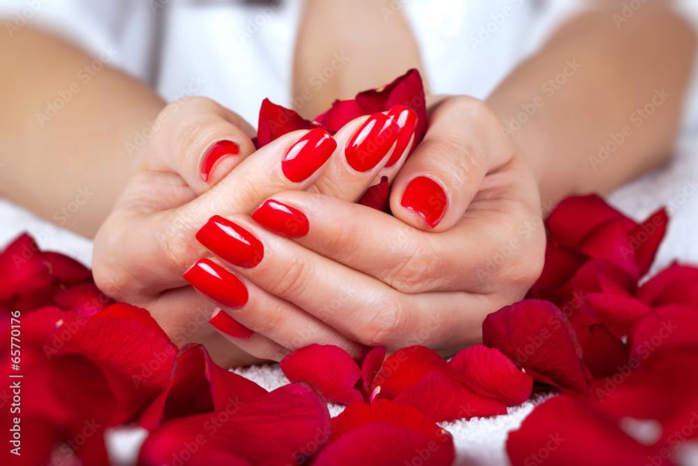 Manucure rouge sur les mains d'une femme avec des feuilles de roses Poster