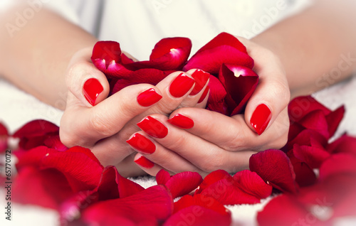 Red manicure on a woman hands with leafs of roses. Poster