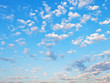 canvas print picture - many little white clouds in blue sky