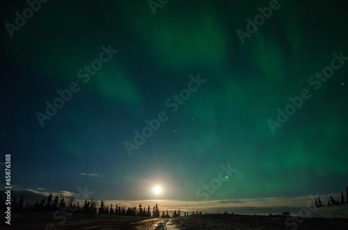 Fotografia, Obraz  Full Moon and Aurora