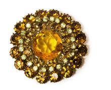Vintage Golden Brooch With Gem...