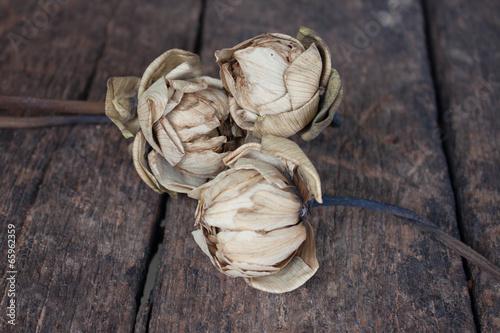 Fotografie, Obraz  Bouquet of dry lotus flower