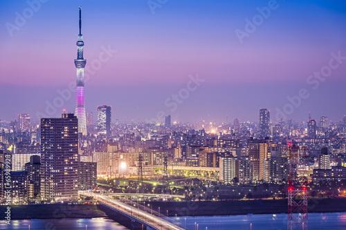 Foto op Canvas Tokyo Tokyo, Japan Skyline at Tokyo Skytree