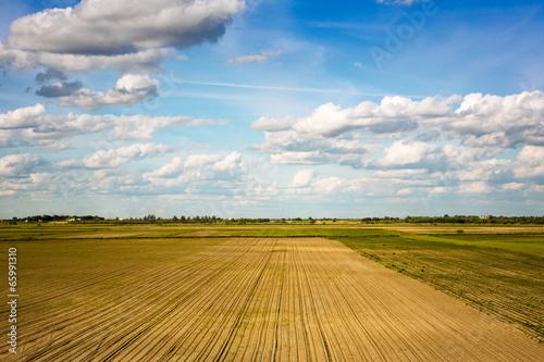 In de dag Platteland Agricultural landscape