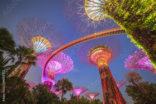 Tuinposter Singapore night time in Singapore