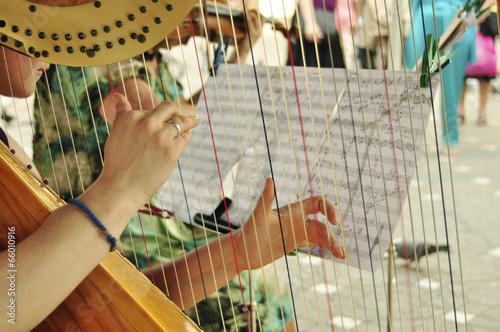 Carta da parati harp player