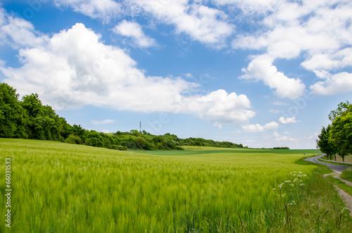 Fotografia  Landschaft in der Eifel 2