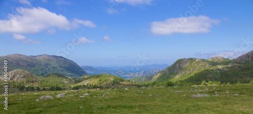 Papiers peints Scandinavie Fjord meadow and sheep 008