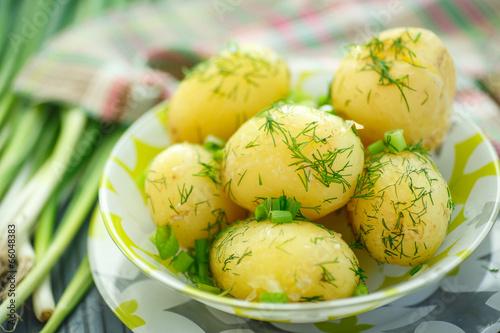 Fototapeta boiled potatoes obraz