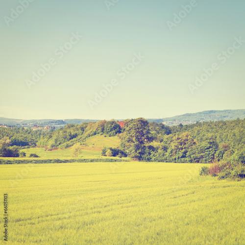 Fotobehang Zwavel geel Fields