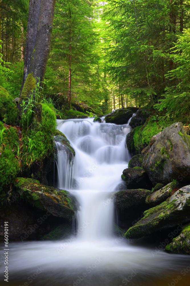 Fototapety, obrazy: Górski potok w parku narodowym Sumava, Czechy