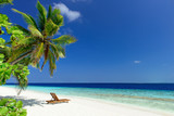 Tropikalna plaża, palma i leżak