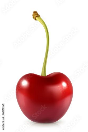 Fotografie, Obraz  Sweet cherry, vector icon