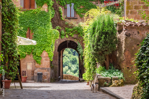 Naklejka premium Starożytne miasto porośnięte bluszczem w Toskanii