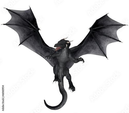 Fotografie, Tablou  Fantasy Dragon