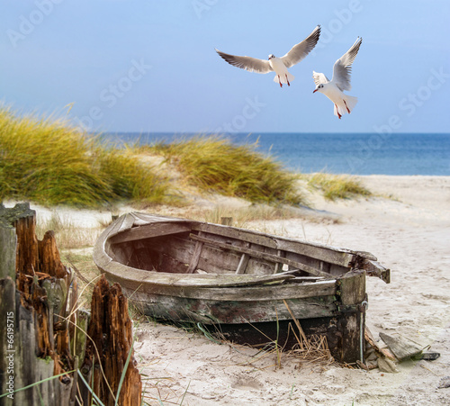 Fotomural altes Fischerboot, Möwen, Strand und Meer