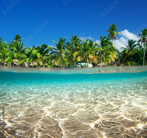 Poster Tropical plage sea