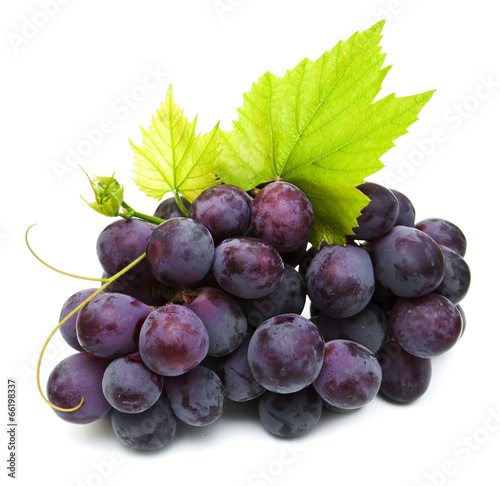 Fotografía  Fresh grape