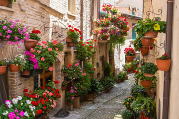 Fototapeta Uliczki Vicolo storico con fiori