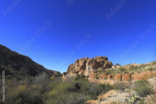 Spoed Foto op Canvas Cappuccino Sonoran Upland Area, AZ