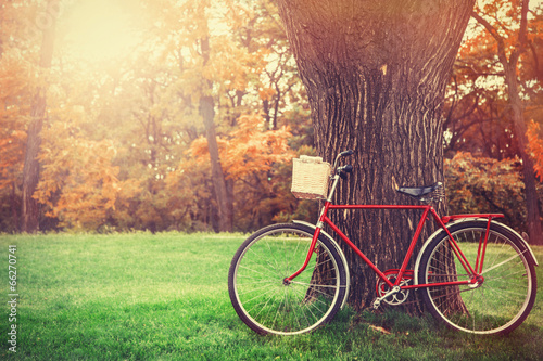 Poster Fiets Vintage bicycle waiting near tree
