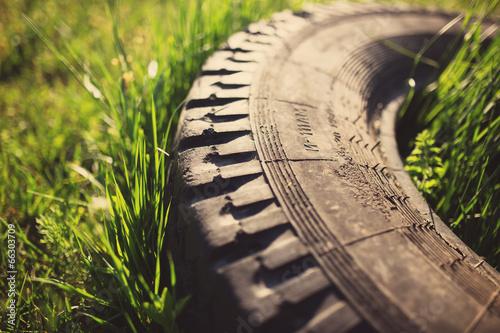 Old tire in grass, tinted photo © Maksim Kostenko