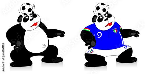 Canvas Prints River, lake Panda Italy Soccer