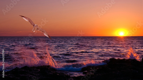 Fotografia, Obraz  Sunset under the storm sea